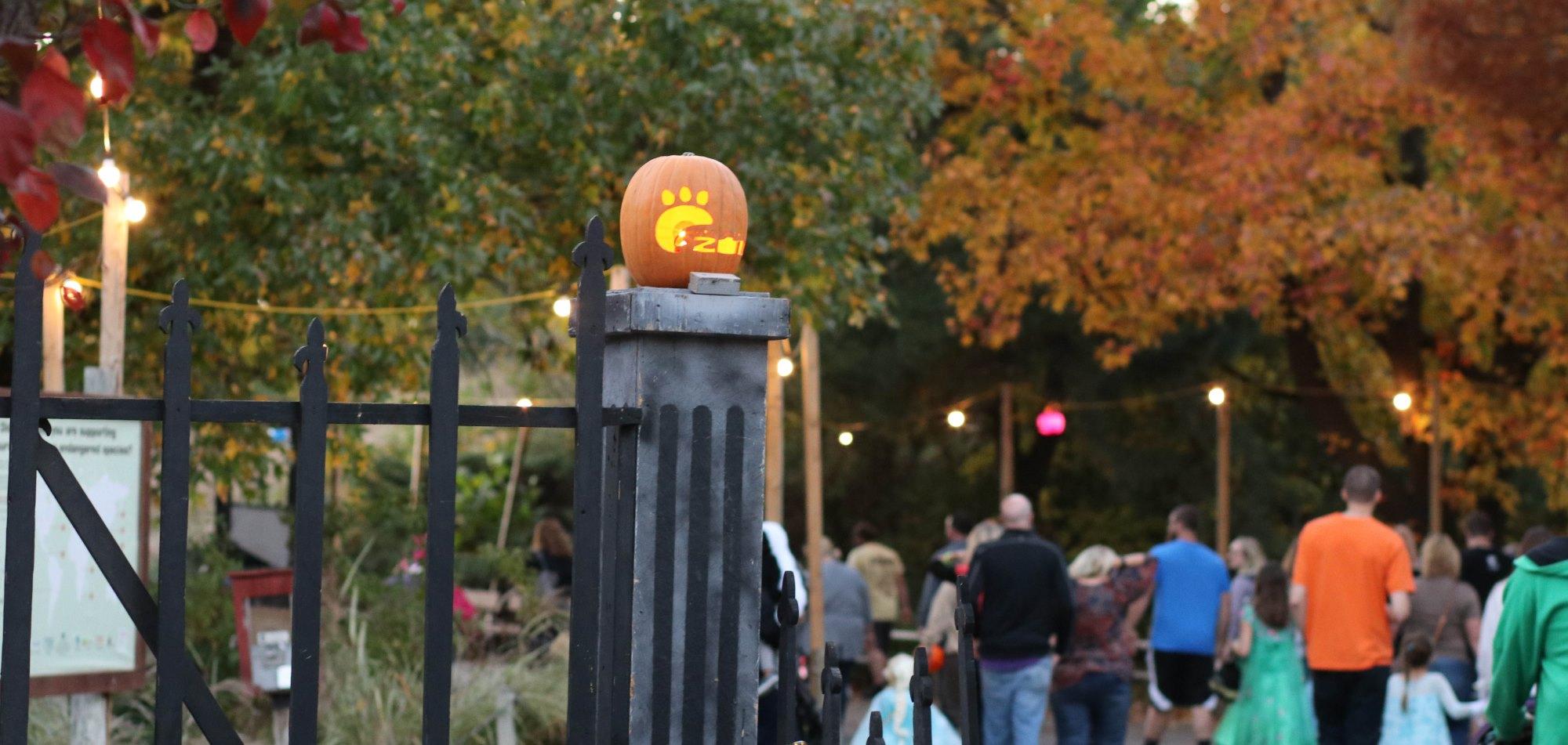 Kansas City Zoo Halloween 2020 Boo At The Zoo Boo at the Zoo – Sedgwick County Zoo